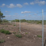 4-strand Barbed Wire Fence with Galvanized t-posts