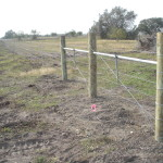 5-strand Barbed Wire Fence with Galvanized t-posts