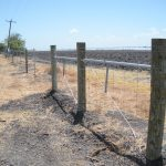 4 ft. Net Wire Fence
